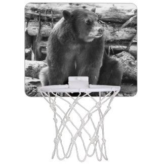 Bear Basketball Hoop