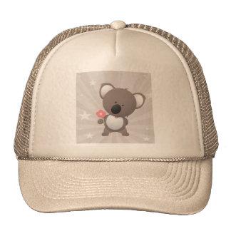 Bear Bears Ursidae Caniforms Cute Cartoon Animal Hats