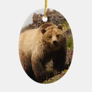 bear christmas ornament