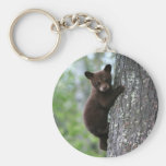 Bear Cub Climbing a Tree Basic Round Button Key Ring