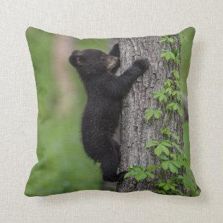 Bear Cub Climbing a Tree Cushion