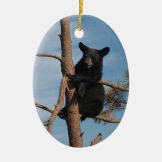 Bear Cub In A Tree Ceramic Oval Decoration