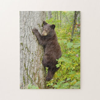 Bear Cub in Tree Jigsaw Puzzle
