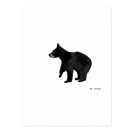 Bear cub postcards