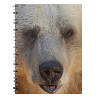 Bear Face Notebook
