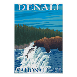 Bear Fishing in River - Denali National Park, Poster