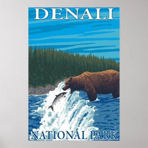 Bear Fishing in River - Denali National Park, Poster