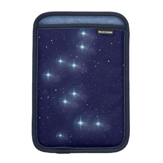 Bear Guardian Constellation Milky Way Stars Case