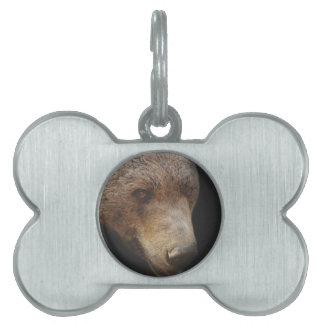 Bear head pet tag