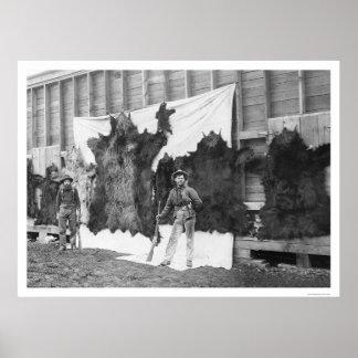 Bear Hunting Alaska 1906 Poster