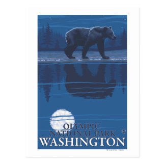 Bear in Moonlight - Olympic National Park, WA Postcard