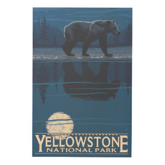 Bear in Moonlight - Yellowstone National Park Wood Print
