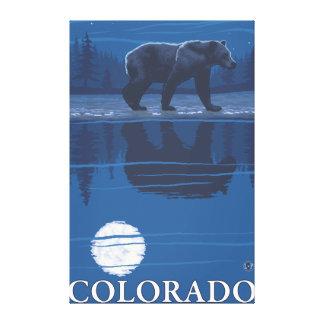 Bear in MoonlightColorado Canvas Print