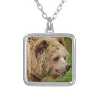 Bear in the wild silver plated necklace