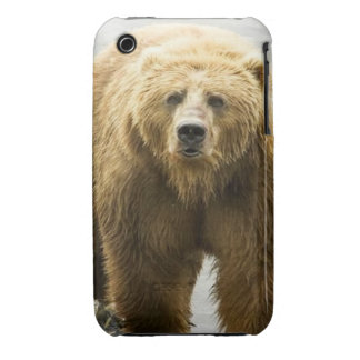 Bear iPhone 3 cover