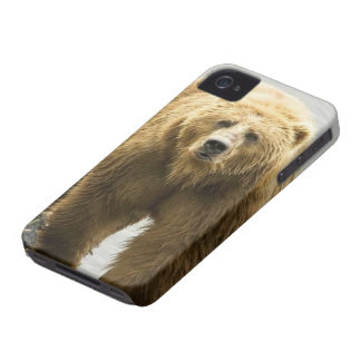Bear iPhone 4 cover