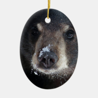 Bear Kisses Anyone? Christmas Ornament