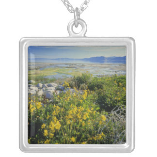 BEAR LAKE, UT, US, monkey-flower & tumbleweed, Silver Plated Necklace
