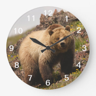 bear large clock