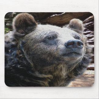 Bear Mousepad 02