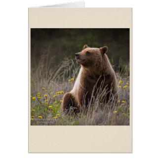 Bear Note Card - blank