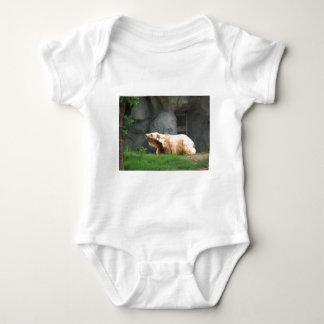 Bear Photo Shirts