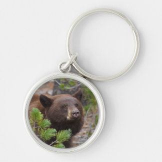 bear Silver-Colored round key ring