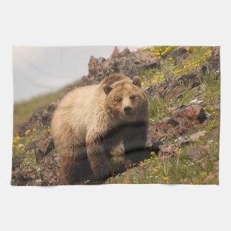 bear tea towel