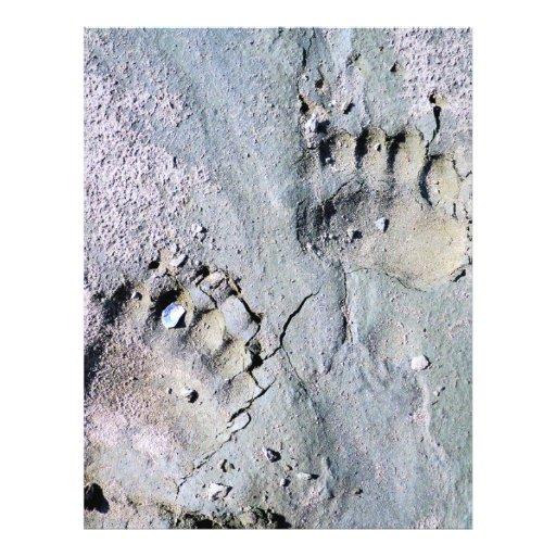 bear tracks flyer