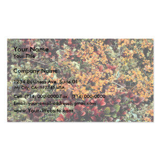 Bearberry and dwarf birch business cards