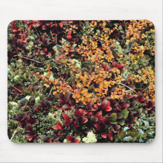 Bearberry and dwarf birch mousepad