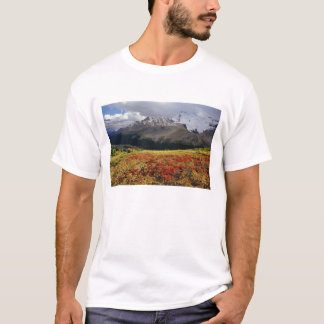 Bearberry in early autumn Athabasca Peak in the T-Shirt