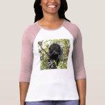 Bearcat 004 T-Shirt