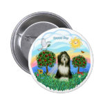 Bearded Collie #8 Pinback Button