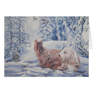 Bearded Collie Christmas Card
