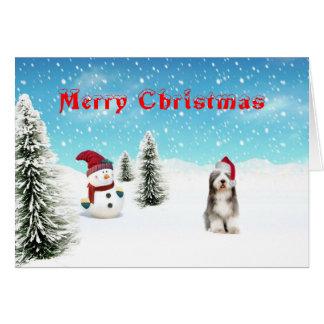 Bearded Collie christmas card