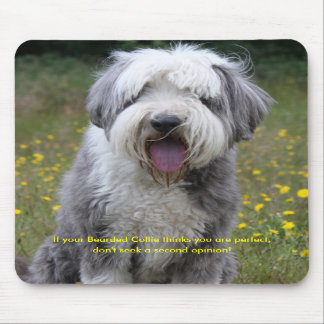 Bearded collie dog humour fun, mousepad
