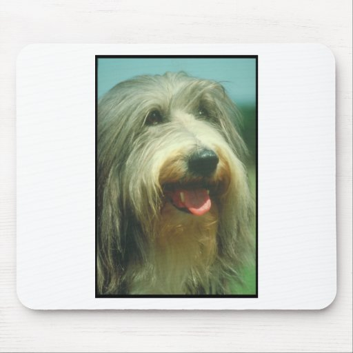 Bearded Collie Mouse Pads