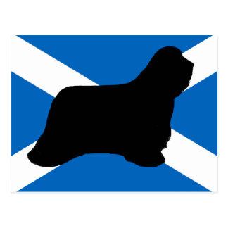 bearded collie silhouette Scotland flag Postcard