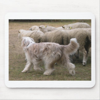 bearded collie working.png mouse pad