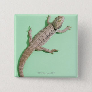 Bearded dragon 15 cm square badge
