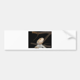Bearded dragon 2 bumper sticker