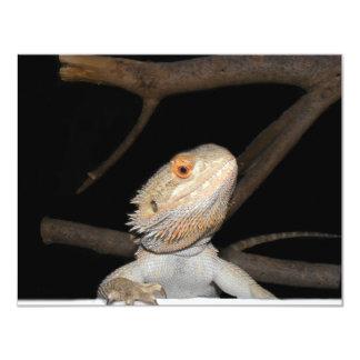 Bearded dragon 2 11 cm x 14 cm invitation card