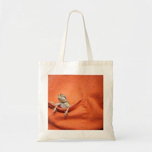 bearded dragon bag