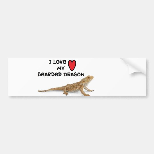 Bearded dragon Bumper Sticker