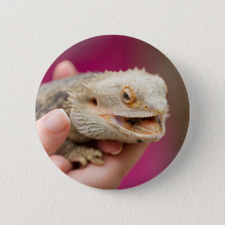 bearded dragon in the hand 6 cm round badge