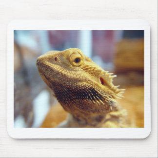Bearded Dragon Mouse Mat