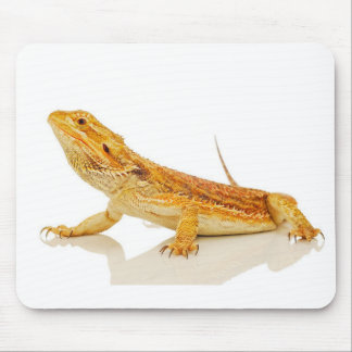 Bearded Dragon Mouse Pad