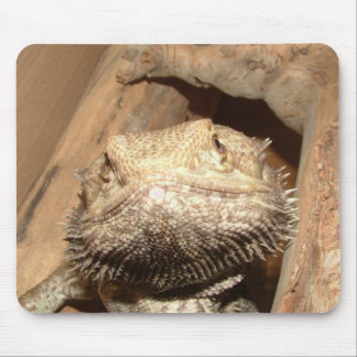 Bearded Dragon Mousemat