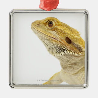 Bearded dragon (Pogona Vitticeps) Christmas Ornament
